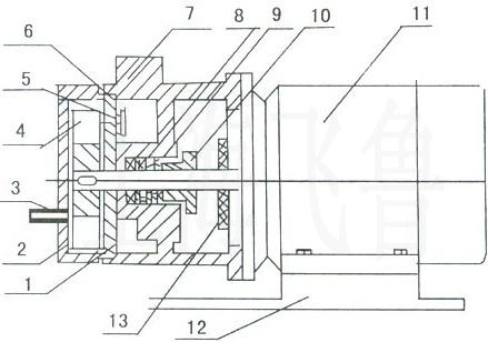 sk直联型水环式真空泵结构图