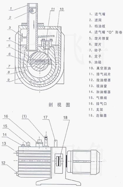 式真空泵结构图